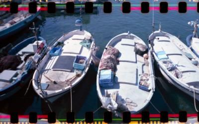 Port de Roses #4